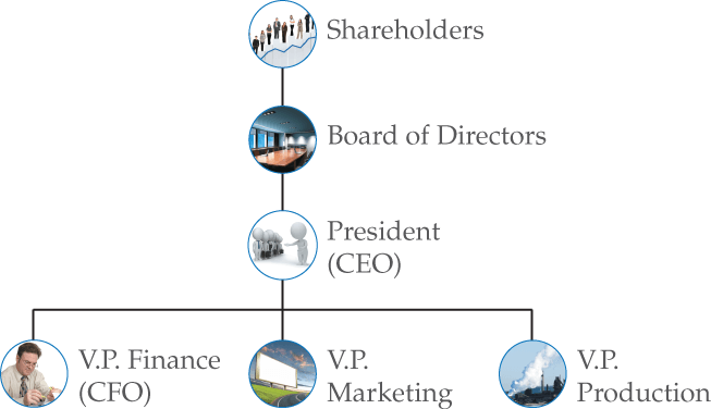 Organizational Structure of a Corporation
